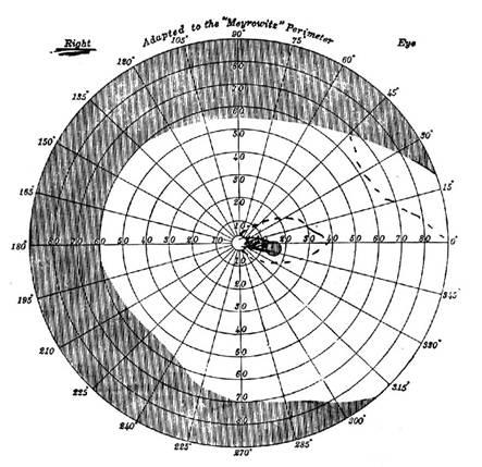 Peripheral Vision and Visual Pathways